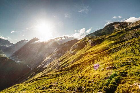 Sun rising over grassy rural hillside - CUF00655