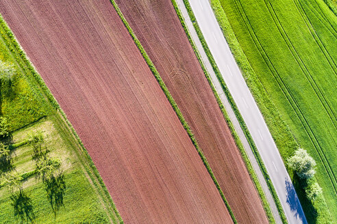 Germany, Baden-Wuerttemberg, Swabian Franconian forest, Rems-Murr-Kreis, plowed field and road - STSF01525