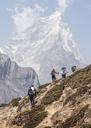 Nepal, Solo Khumbu, Everest, Group of mounaineers hiking at Dingboche - ALRF01087
