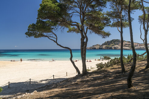 Spain, Balearic Islands, Mallorca, Cala Rajada, Cala Agulla, bay and beach - PCF00361