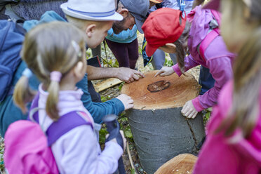 Man and kids on a field trip examining tree stump - ZEDF01392