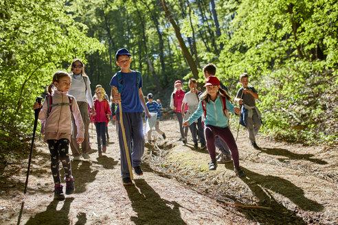 Kids on a field trip in forest - ZEDF01395