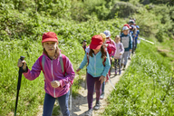 Kids on a field trip on trail - ZEDF01398