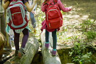 Girls with backpacks balancing on logs in forest - ZEDF01404