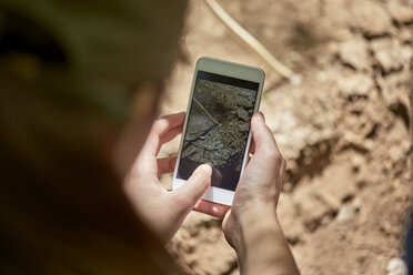 Girl taking smartphone picture from soil - ZEDF01407
