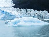 Argentina, Patagonia, El Calafate, Puerto Bandera, Lago Argentino, Parque Nacional Los Glaciares, Estancia Cristina, Spegazzini Glacier, iceberg - AMF05711