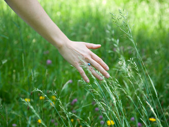Woman running hand through grass - CUF01558