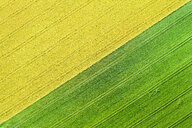 Germany, Baden-Wuerttemberg, Rems-Murr-Kreis, Aerial view of fields in spring - STSF01534