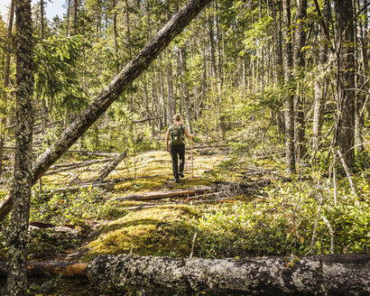 Female hiker in forest at Comox Lake, Coutenay, Vancouver Island, British Columbia, Canada - CUF03852