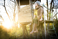 Mature woman looking out from woodland treehouse at sunset - CUF04584