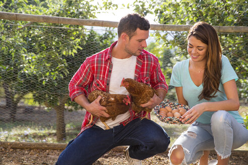 Organic farming couple holding free range chicken and basket of eggs - CUF05408