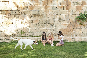 Three young women sitting at stone wall taking picture of dog passing - IGGF00483