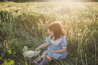Young girl in field, stroking duck - ISF01390