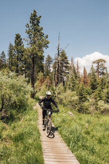 Man cycling on path through forest, Mammoth Lakes, California, USA, North America - CUF07253