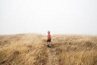 Boy in foggy field landscape, Fairfax, California, USA, North America - CUF07271