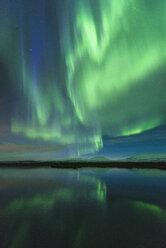 Aurora borealis, Thingvellir, Iceland - CUF07609