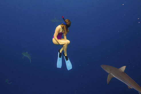 Underwater view of woman snorkeling with sea life, Oahu, Hawaii, USA - ISF01478