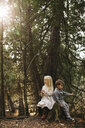 Siblings sitting on tree stump in forest - ISF01563