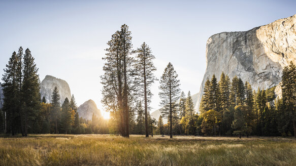 Meadow and rock formations at sunset, Yosemite National Park, California, USA - CUF07989