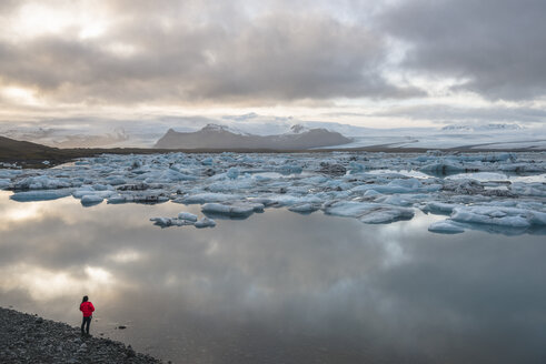High angle view of tourist looking out at icebergs on glacial lagoon, Jokulsarlon, Iceland - CUF09533