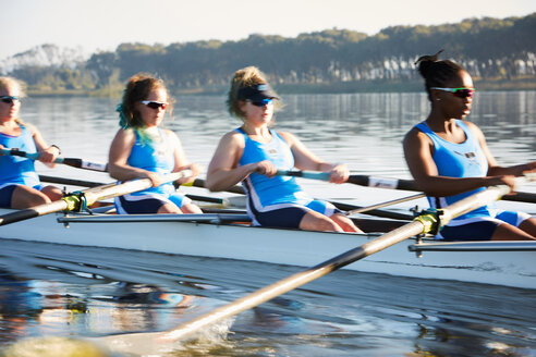 Female rowers rowing scull on sunny lake - CAIF20659