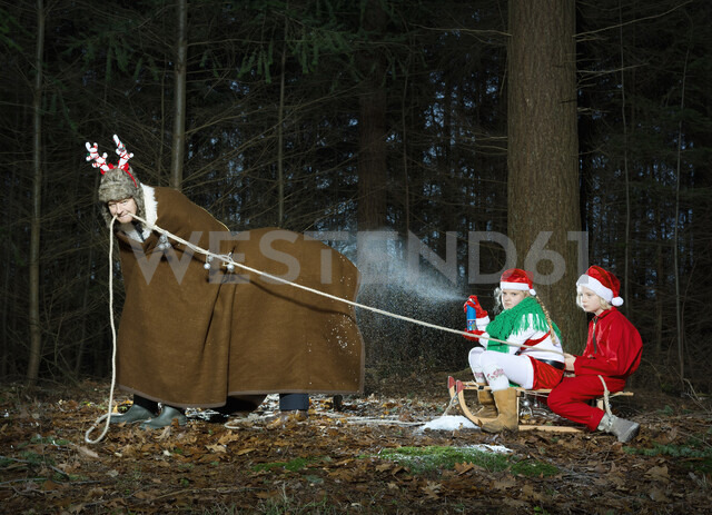 Father disguised as reindeer pulling sleigh with children in Santa costume - CUF10357
