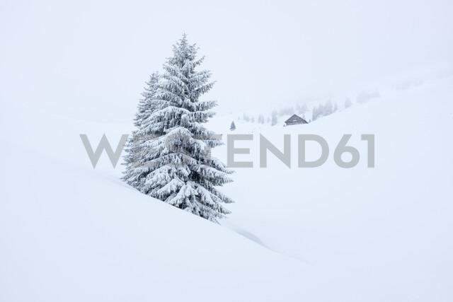 Austria, Salzburg State, Heutal, Sonntagshorn, snow-covered landscape - HAMF00296 - Hans Mitterer/Westend61