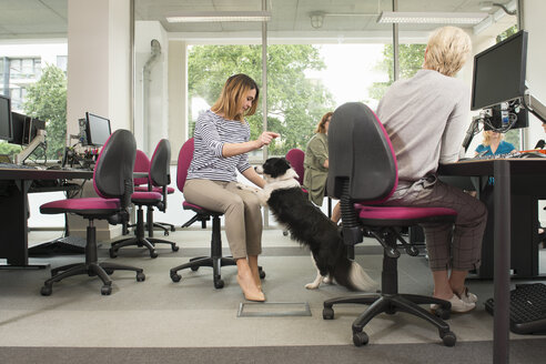 Women with pet dog in office - CUF11096