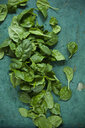 Spinach leaves on green background - ASF06182