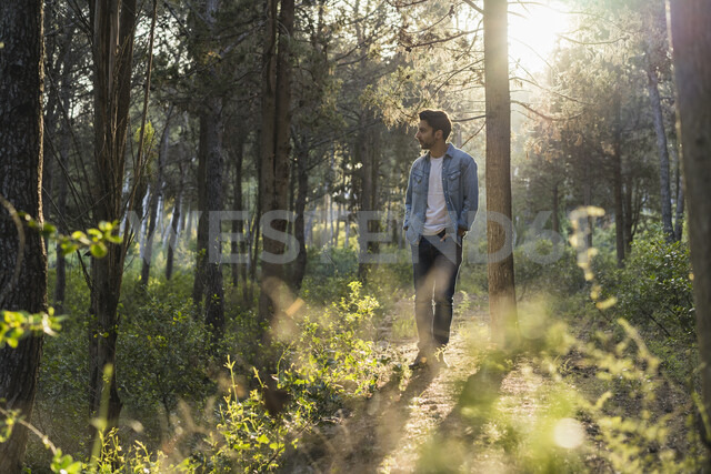 Young man standing in forest, against the sun - AFVF00472