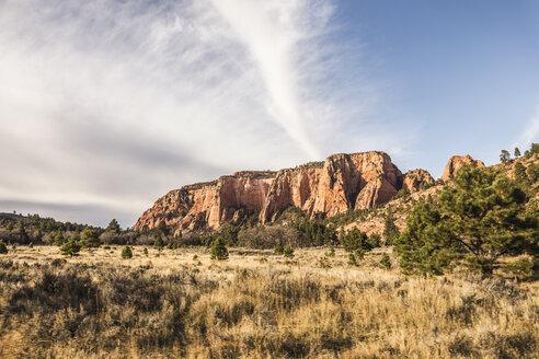 Rock formation, Zion National Park, Springdale, Utah, USA - CUF12727