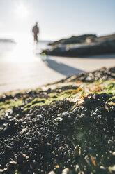 Norway, Lofoten, Moskenesoy, Man walking into the sun  at Kvalvika Beach - GUSF00888