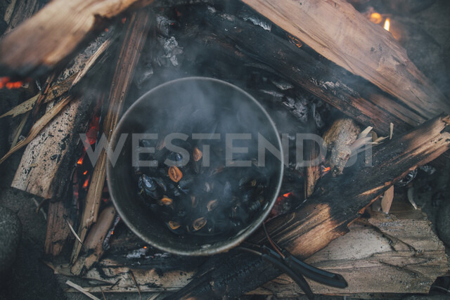 Norway, Lofoten, Moskenesoy, Food cooking on camp fire - GUSF00894