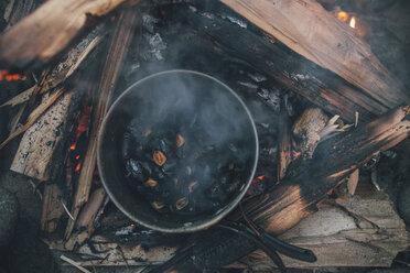 Norway, Lofoten, Moskenesoy, Food cooking on camp fire - GUSF00894