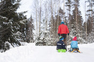 Rear view of man pulling two sons on toboggans through snow covered forest - ISF03084