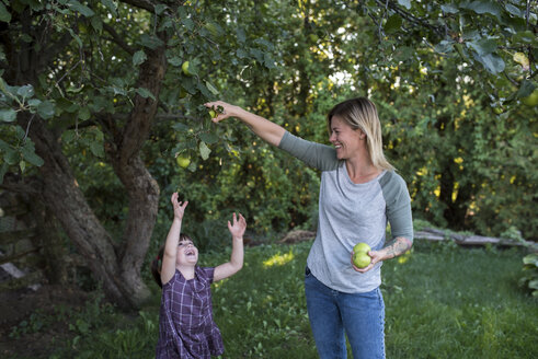 Mother helping daughter reach apple on tree - ISF03756