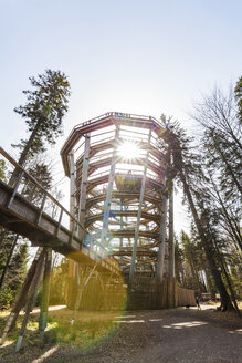 Germany, Bad Wildbad, Black Forest, Canopy Walk Black Forest against the sun - WDF04670