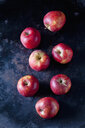 Seven red apples on dark ground - CSF29210