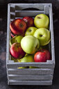 Grey wooden box of apples - CSF29213