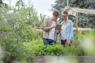 Young man and woman in urban garden, photographing plants using digital tablet - ISF04546