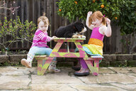 Two young sisters sitting on garden bench with pet dog - ISF04639