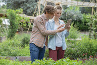 Young man and woman in urban garden, photographing plants using digital tablet - ISF04660