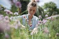 Woman gardening - ISF04663