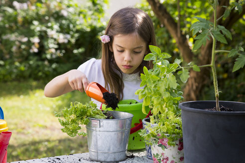 Portrait of little girl potting parsley on table in the garden - LVF06995