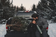 Father and daughter on back of pick up truck with their Christmas tree - ISF04745