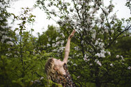 Girl with wavy blond hair reaching up to tree blossom - ISF05468