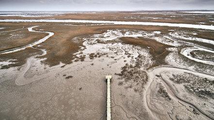 USA, Virginia, Aerial view of Virginia Coast Reserve, pier, marsh along the shoreline - BCDF00344