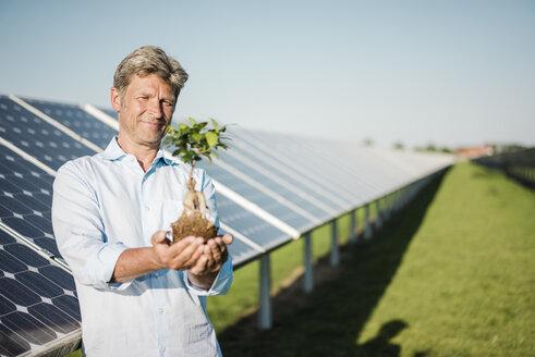 Mature man holding privet, solar plant - MOEF01163