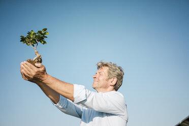 Mature man holding privet, blue sky, copy space - MOEF01166