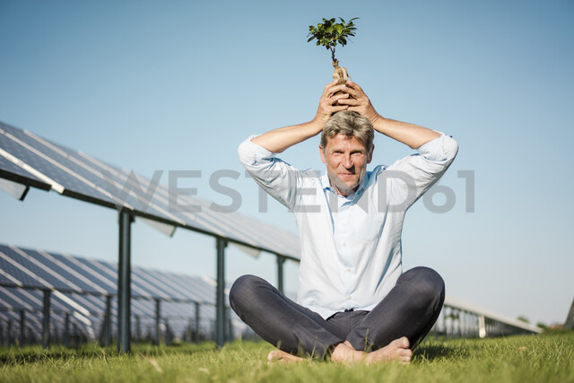 Mature man with privet on the head, solar plant - MOEF01169